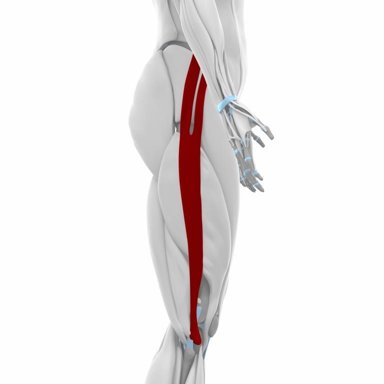 Běžecké koleno iliotibiální syndrom